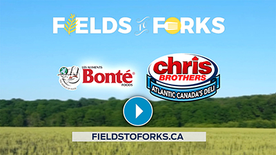 fields fork bonte